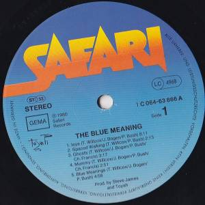Toyah: The Blue Meaning (LP) - Bild 2