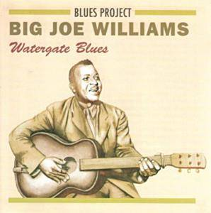 Cover - Big Joe Williams: Watergate Blues