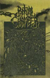 Ritual Chamber: Pits Of Tentacled Screams, The - Cover