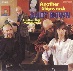 Andy Bown: Another Shipwreck - Cover