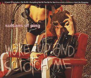 Cover - Sultans Of Ping: Wake Up And Scratch Me