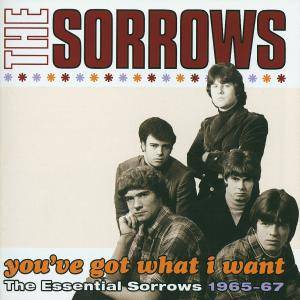 Cover - Sorrows, The: You've Got What I Want - The Essential Sorrows 1965-67