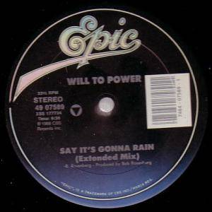 Cover - Will To Power: Say It's Gonna Rain