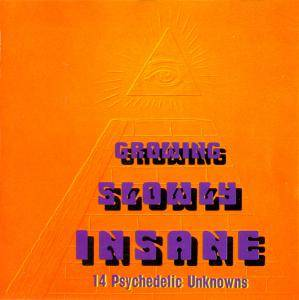 Cover - Flower Travellin' Band: Growing Slowly Insane