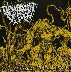Cover - Disfigurement Of Flesh: Promotional CD 2013