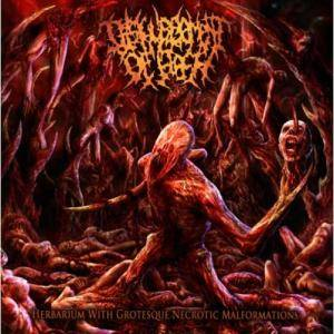 Cover - Disfigurement Of Flesh: Herbarium With Grotesque Necrotic Malformations