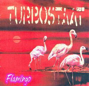 Turbostaat: Flamingo - Cover