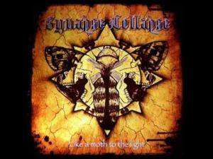 Synapse Collapse: Like A Moth To The Light - Cover