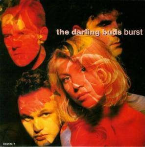 Cover - Darling Buds: Burst