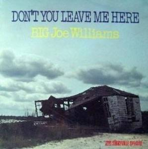 Cover - Big Joe Williams: Don't You Lease Me Here