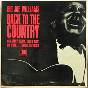 Cover - Big Joe Williams: Back To The Country