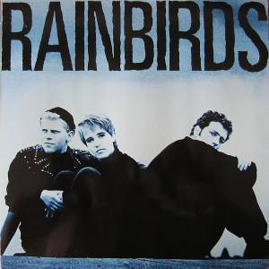 Rainbirds: Rainbirds (LP) - Bild 1
