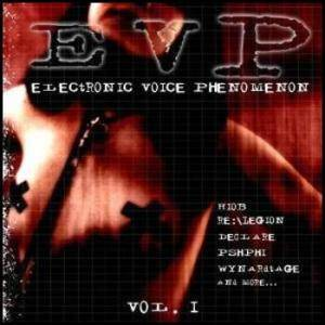 Cover - May-Fly: Electronic Voice Phenomenon Vol. I