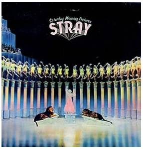 Stray: Saturday Morning Pictures - Cover