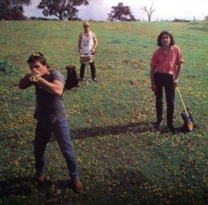 Cover - Cosmic Psychos: Down On The Farm