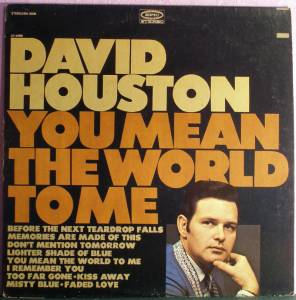 Cover - David Houston: You Mean The World To Me