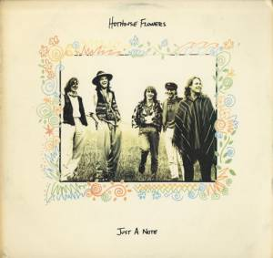 Cover - Hothouse Flowers: Just A Note