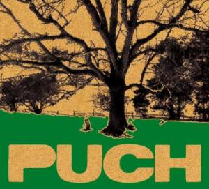 Puch - 20 Jahre Puch Open Air Compilation - Cover