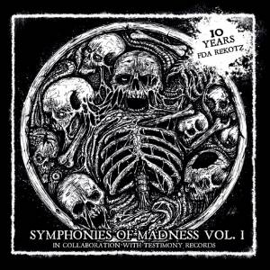 Symphonies Of Madness Vol. 1 - 10 Years FDA Rekotz - Cover