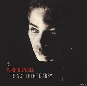 Terence Trent D'Arby: Wishing Well - Cover