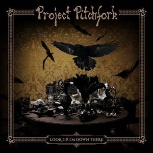 Project Pitchfork: Look Up, I'm Down There - Cover