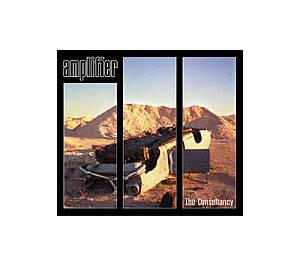 Cover - Amplifier: Consultancy, The