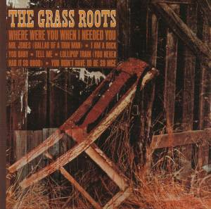 Cover - Grass Roots, The: Where Were You When I Needed You