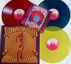 Vibravoid:A Night At The Museum - 3-LP, 2017, Limited ...