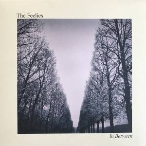 Cover - Feelies, The: In Between