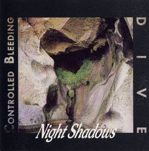 Cover - Controlled Bleeding: Night Shadows