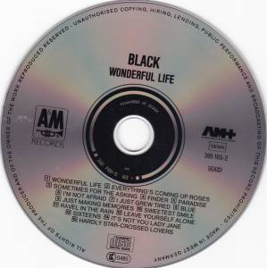 Black: Wonderful Life (CD) - Bild 3