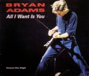 Bryan Adams: All I Want Is You - Cover