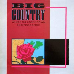"Big Country: Where The Rose Is Sown (12"") - Bild 1"