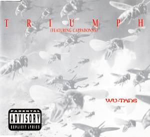 Cover - Wu-Tang Clan Feat. Cappadonna: Triumph