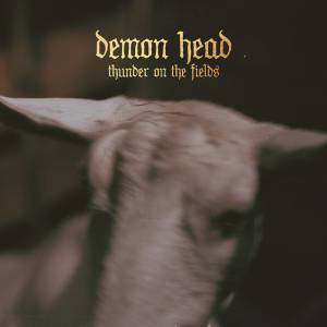 Demon Head: Thunder On The Fields (CD) - Bild 1