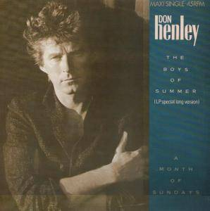 Don Henley: Boys Of Summer, The - Cover
