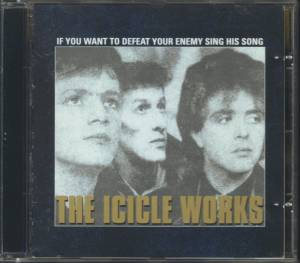 The Icicle Works: If You Want To Defeat Your Enemy Sing His Song (CD) - Bild 5