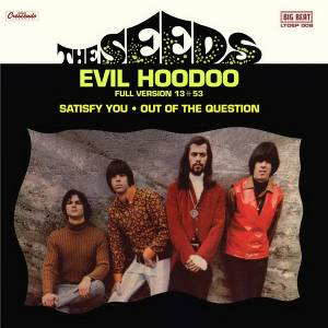 Cover - Seeds, The: Evil Hoodoo