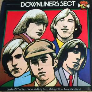 Cover - Downliners Sect, The: I Want My Baby Back
