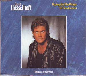 David Hasselhoff: Flying On The Wings Of Tenderness - Cover