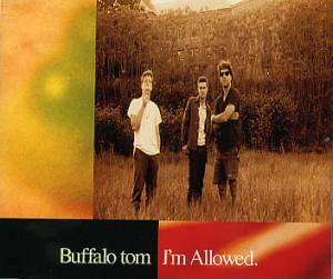 Buffalo Tom: I'm Allowed - Cover