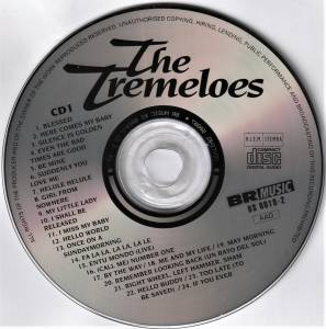 The Tremeloes: The Story Of The Tremeloes (2-CD) - Bild 4