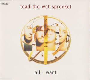 Cover - Toad The Wet Sprocket: All I Want