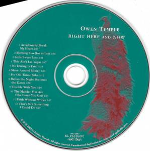 Owen Temple: Right Here And Now (CD) - Bild 3