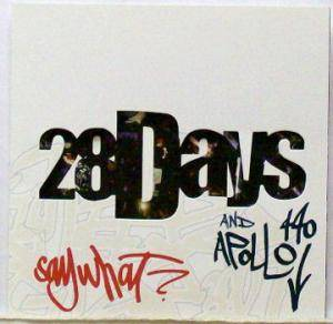 Cover - 28 Days: Say What?
