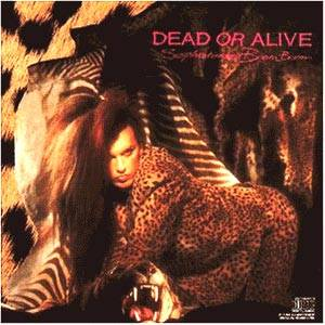 Dead Or Alive: Sophisticated Boom Boom - Cover