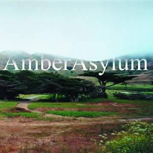 Cover - Amber Asylum: Supernatural Parlour Collection, The