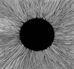 VOLA: Witness (CD) - Bild 1
