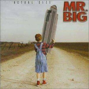 Cover - Mr. Big: Actual Size