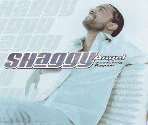 Cover - Shaggy Feat. Rayvon: Angel